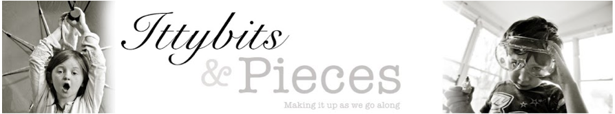 ittybits and pieces blog by siobhan connolly
